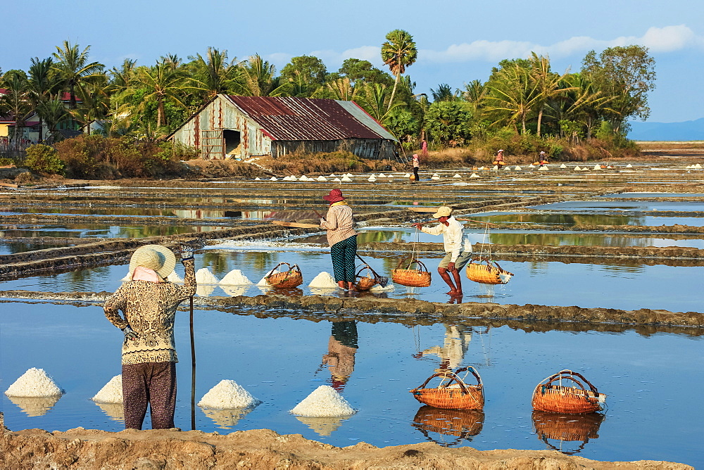 Piles of salt and workers harvesting the salt fields around the Praek Tuek Chhu River estuary south of the city, Kampot, Cambodia, Indochina, Southeast Asia, Asia - 83-13153