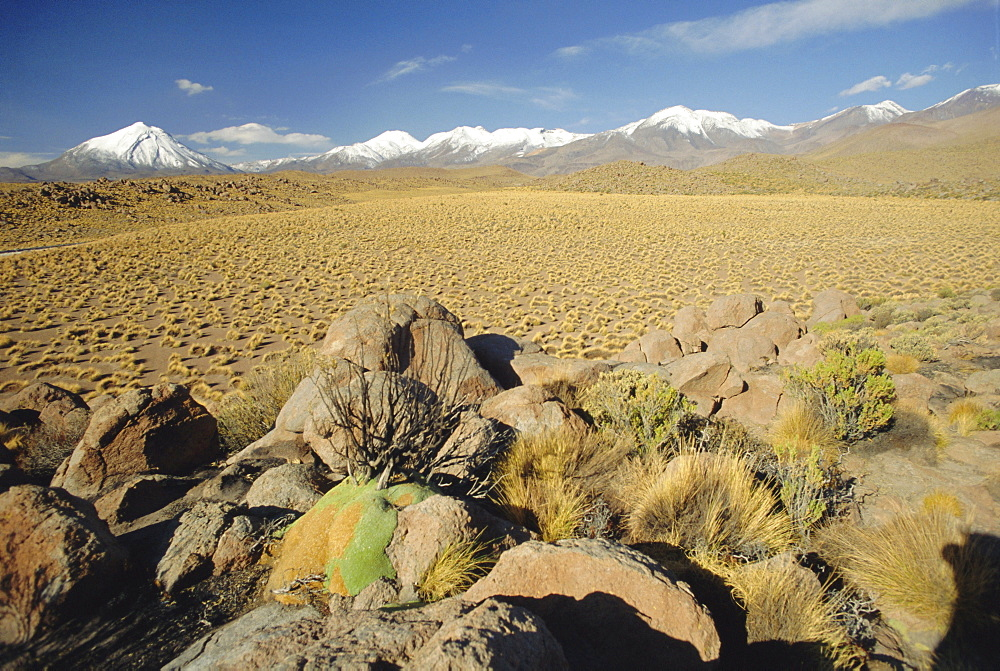 The Atacama Desert and snow capped Andes beyond, San Pedro de Atacama region, Chile, South America
