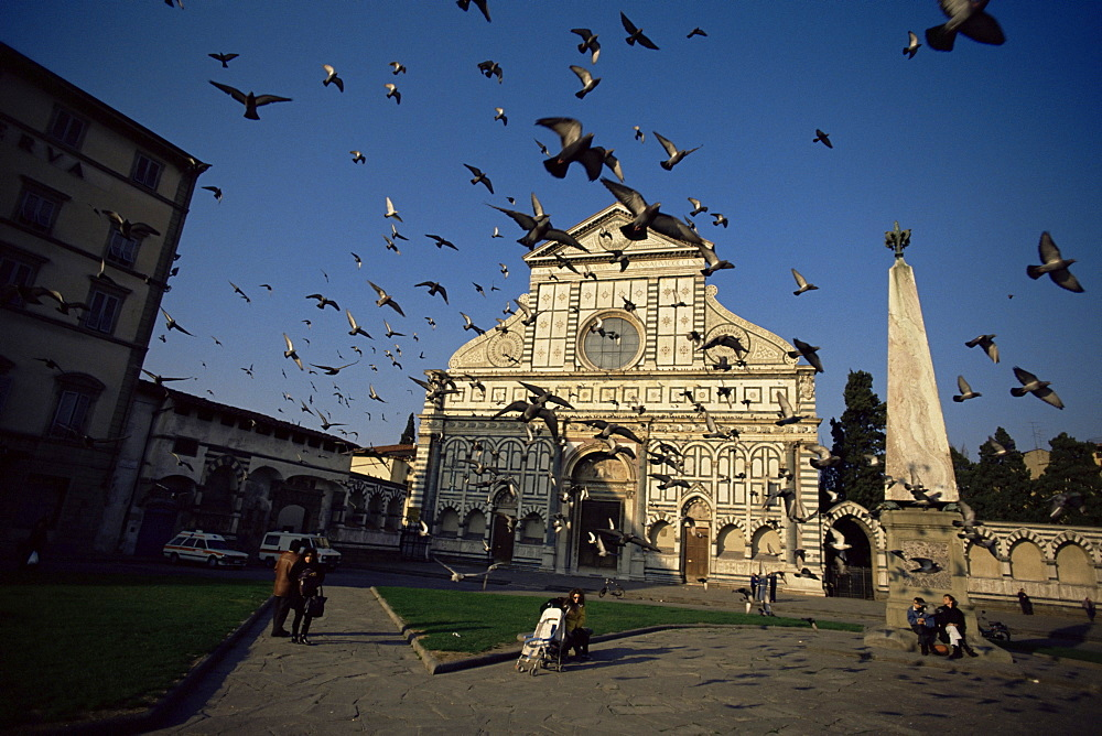 Pigeons in flight in the Piazza Santa Maria Novella, Florence, Tuscany, Italy, Europe