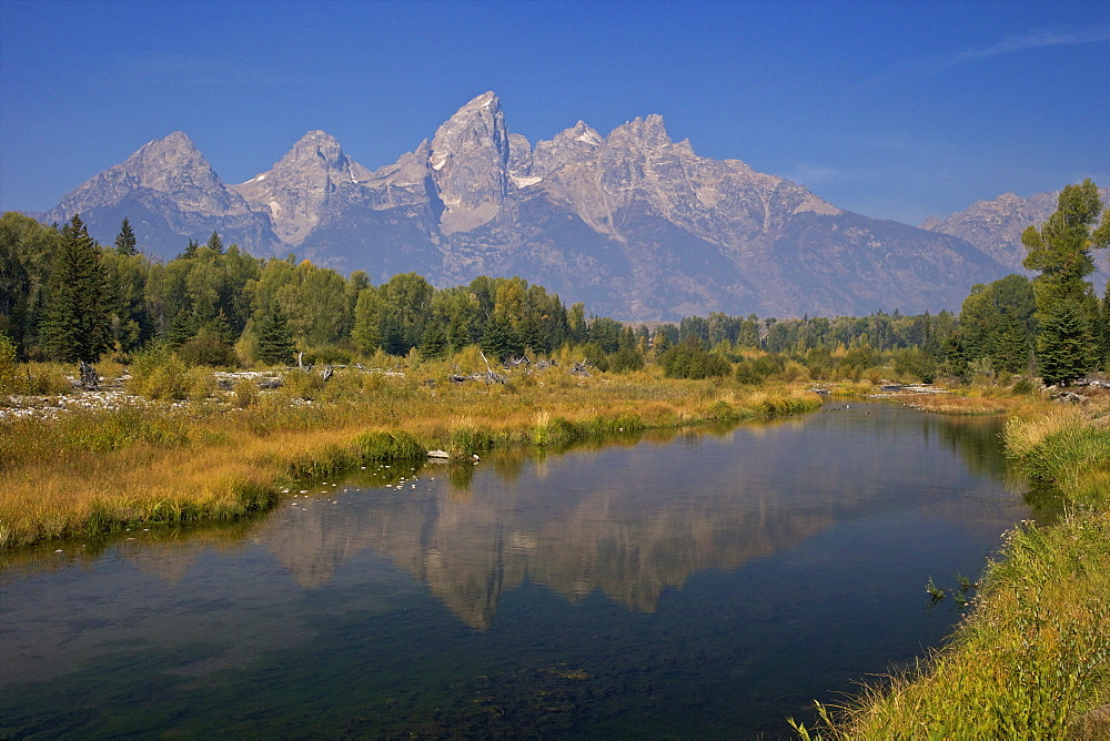 Snake River at the Schwabacher Landing, Grand Teton National Park, Wyoming, United States of America, North America