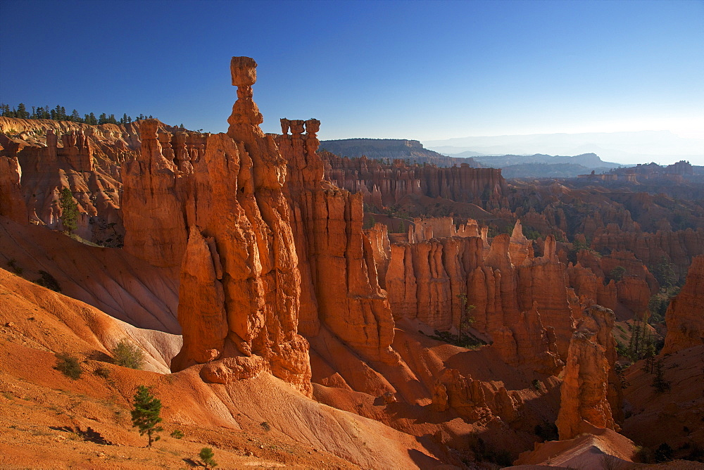 Thor's Hammer in early morning from Sunset Point, Bryce Canyon National Park, Utah, United States of America, North America