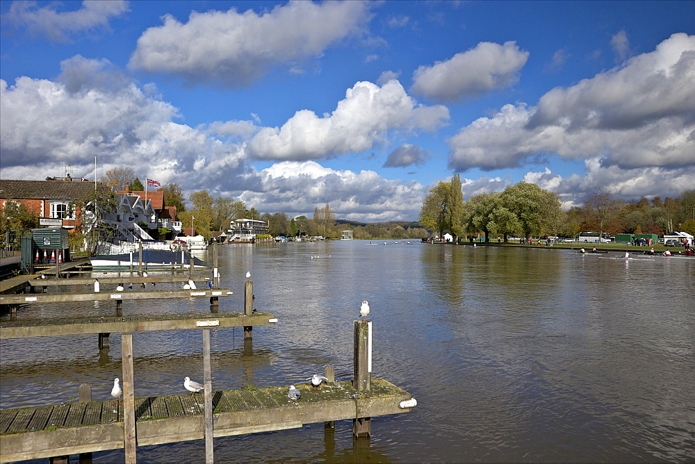 Riverside view in winter sunshine, Henley-on-Thames, Oxfordshire, England, United Kingdom, Europe