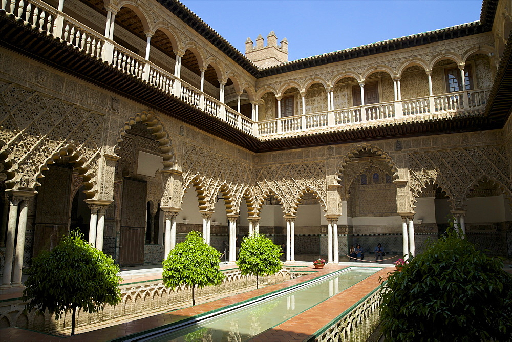 Courtyard garden, Alcazar, UNESCO World Heritage Site, Seville, Andalucia, Spain, Europe