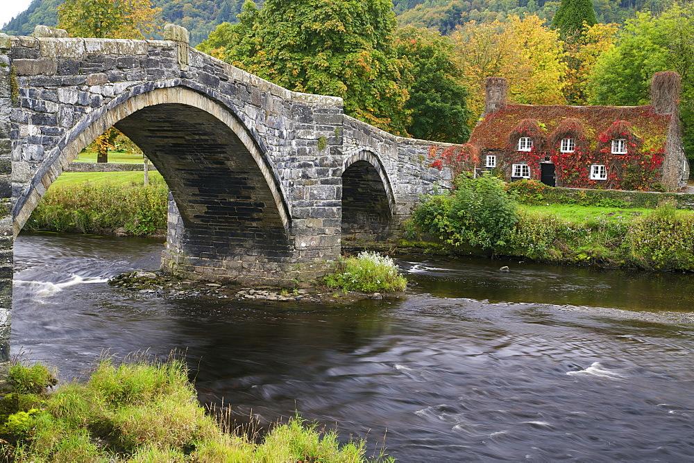 Tu Hwnt Ir Bont Tearoom in autumn, Tu Hwnt, Llanrwst, near Betwys-y-Coed, Conwy Valley, Wales, United Kingdom, Europe - 831-1500