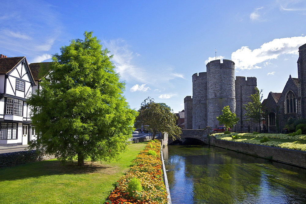 Westgate medieval gatehouse and gardens, with bridge over the River Stour, Canterbury, Kent, England, United Kingdom, Europe