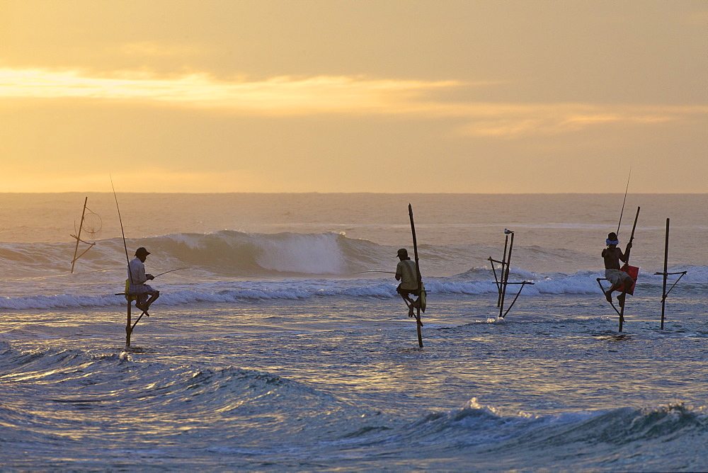 Stilt fishermen at Weligama, South Coast, Sri Lanka, Asia
