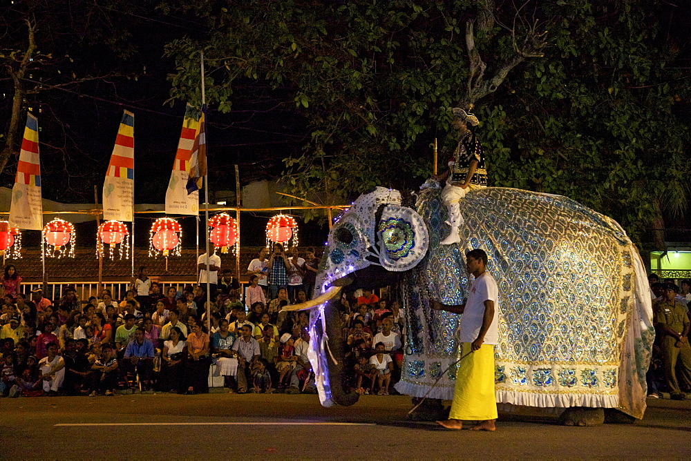 Ceremonial elephant in the Navam Maha Perahera, Colombo, Sri Lanka