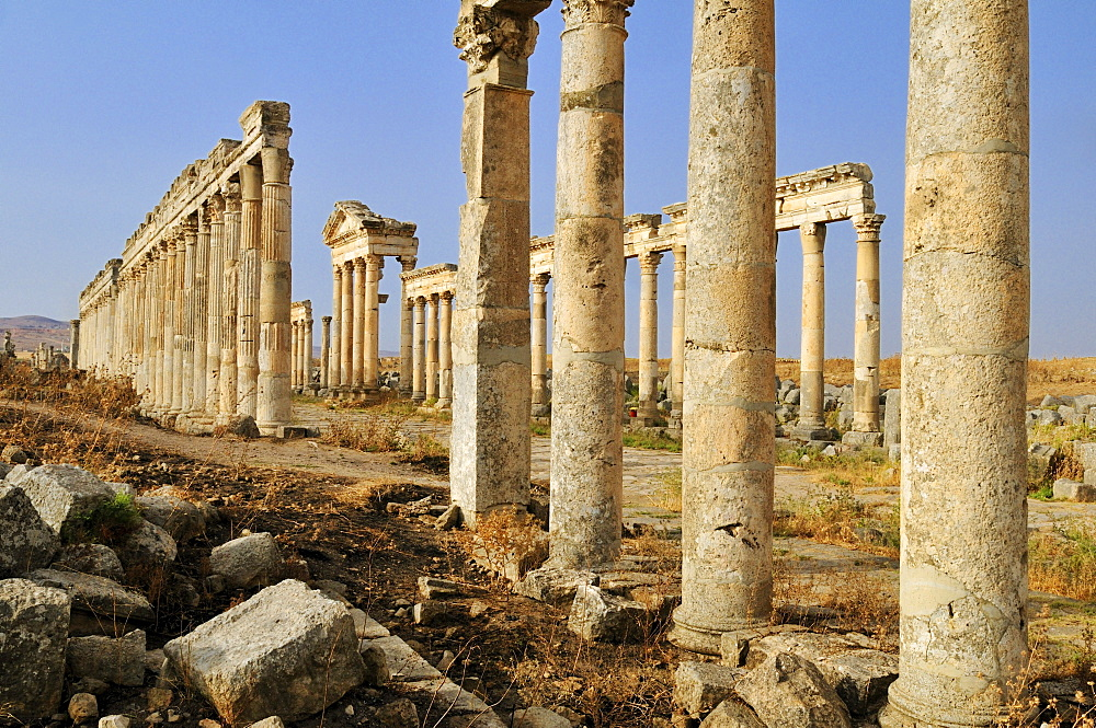 Ruins at the Roman archeological site of Apameia, Apamea, Qalaat al Mudiq, Syria, Middle East, West Asia