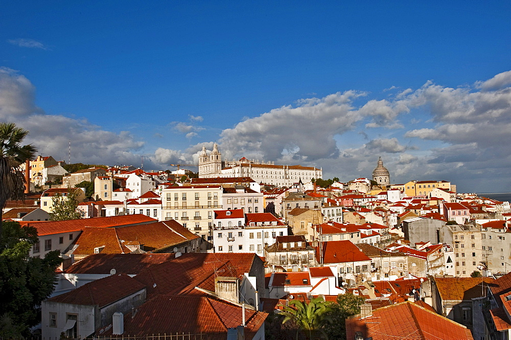 View from Miradouro Santa Luzia on the church Igreja Sao Vicente de Fora, Alfama district, Lisbon, Portugal, Europe