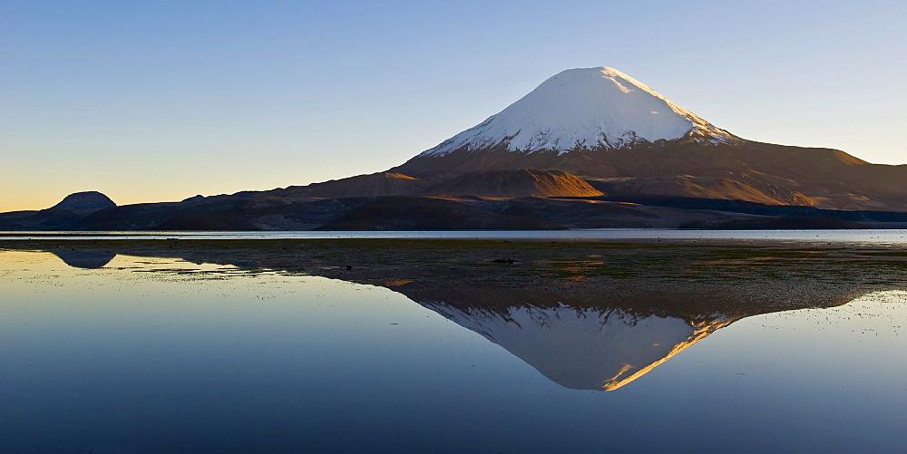 Parinacota volcano reflecting in the Chungara lake, Lauca national park, UNESCO Biosphere Reserve, Arica and Parinacota Region, Chile, South America
