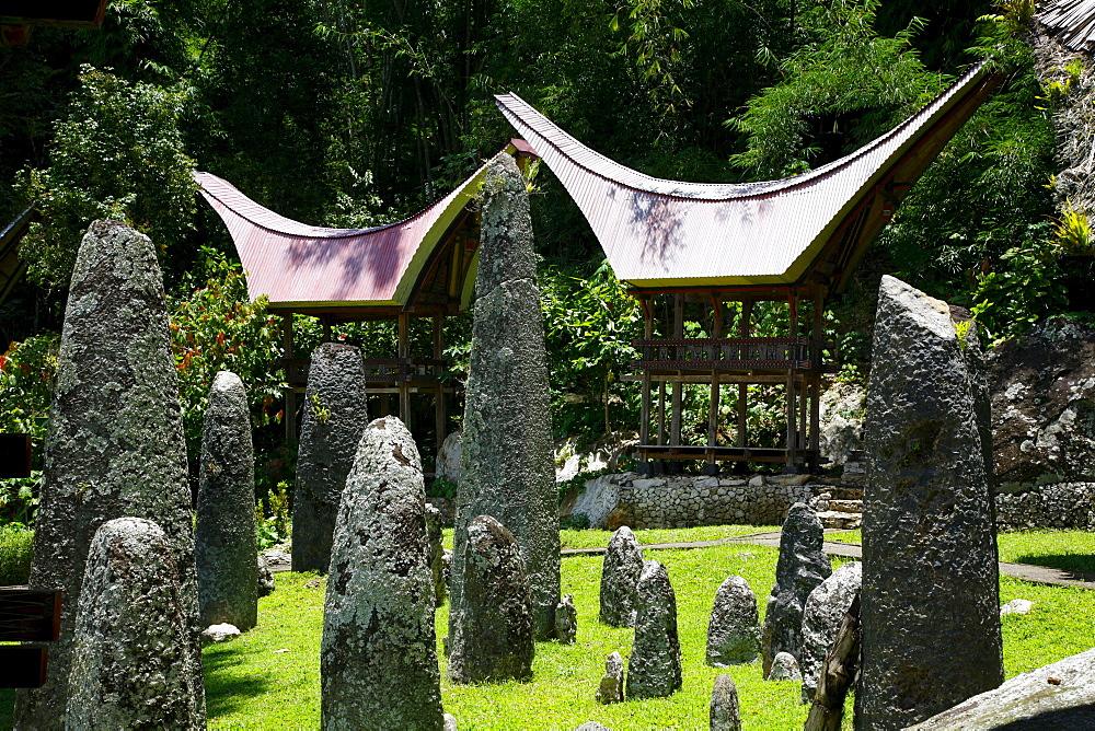 Megalithic complex, Kalimbuang Bori, Toraja culture, Sulawesi, Indonesia, Asia