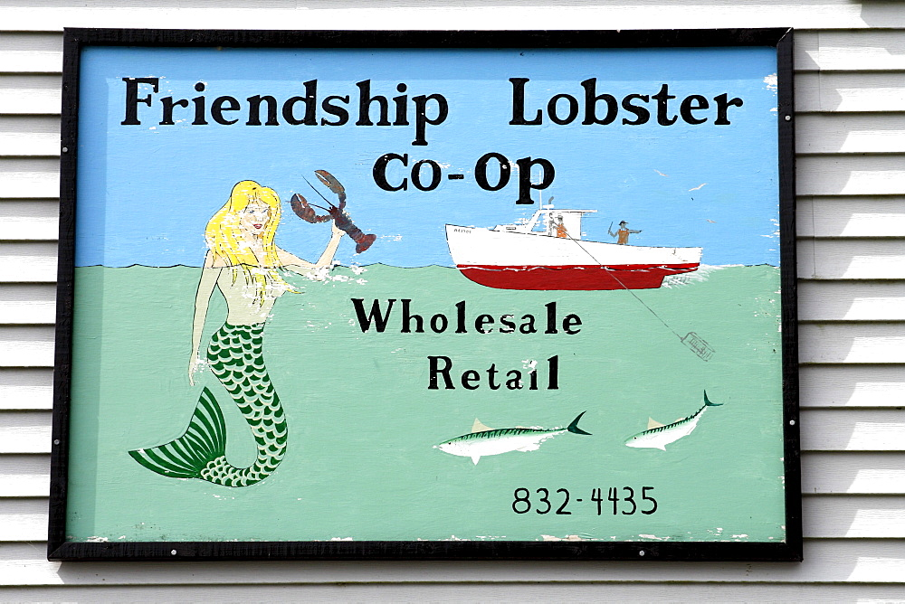 Lobster for sale, sign, Friendship fishing village, Maine coast, New England, USA
