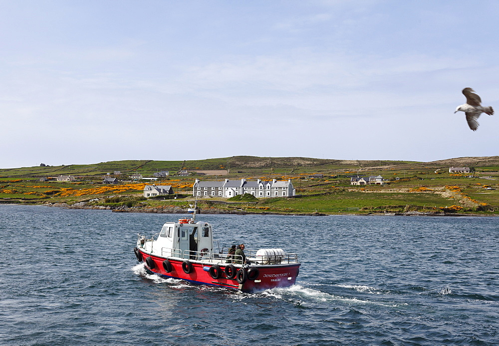 Boat off Valentia Island, Skellig Ring, County Kerry, Ireland, British Isles, Europe