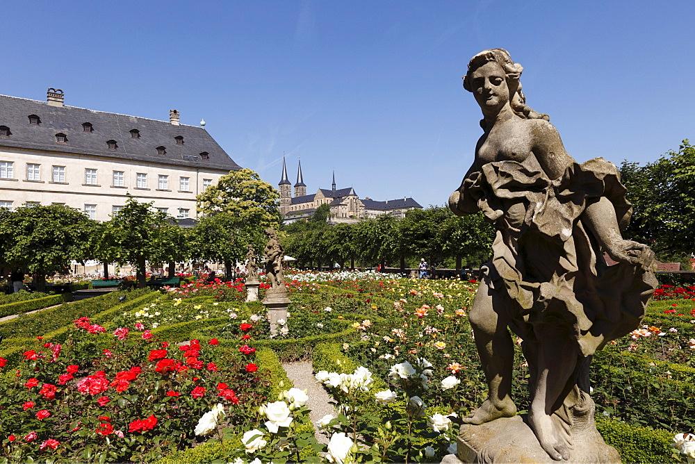 Rose garden of the Neue Residenz, New Residence, church of St. Michael, Bamberg, Upper Franconia, Franconia, Bavaria, Germany, Europe