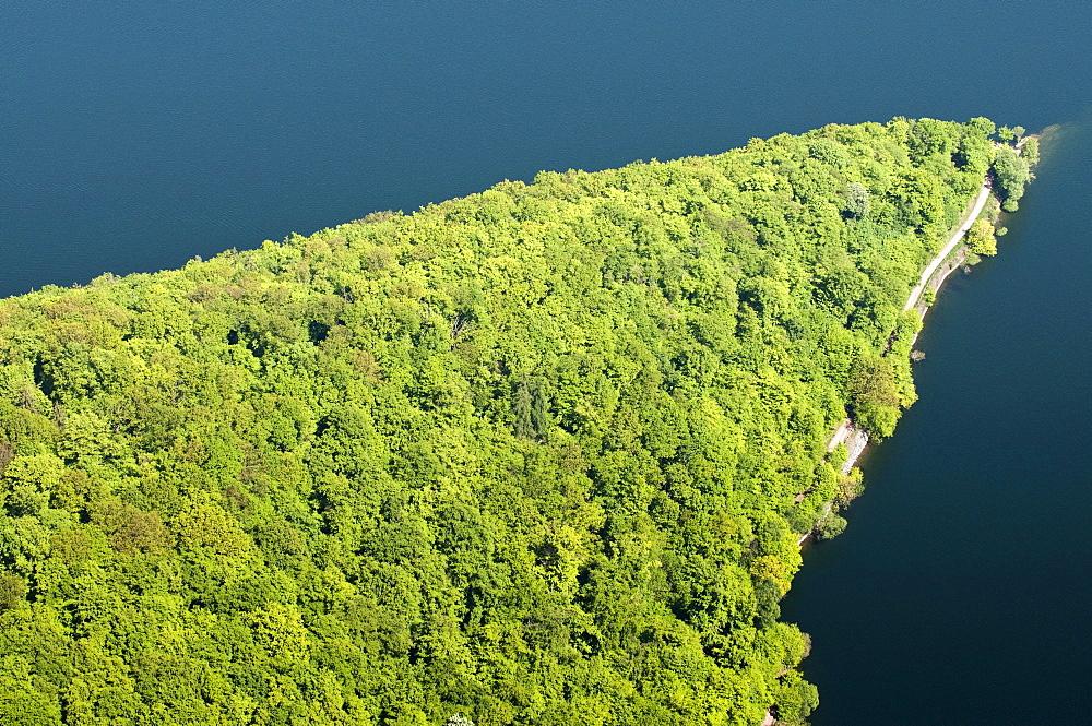 Peninsula, Edersee lake, Kellerwald National Park, North Hesse, Germany, Europe