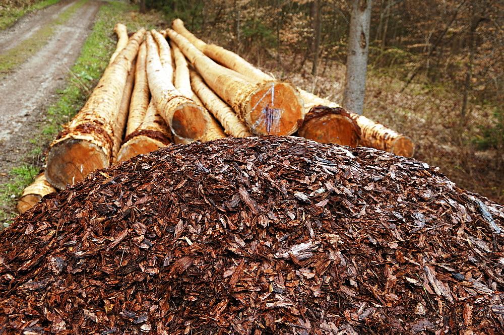 Peeled bark, in the back the peeled spruce logs (Piceoideae) Neunhof, Middle Franconia, Bavaria, Germany, Europe