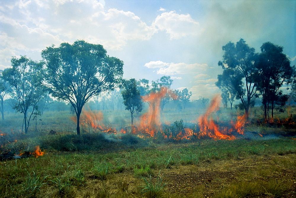 Bushfire, Western Australia, Australia