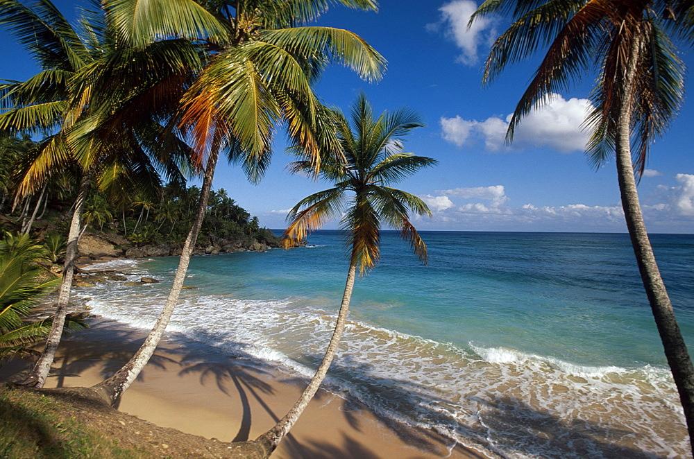 Bay and beach at Playa Grande Rio San Juan on the north coast, Dominican Republic
