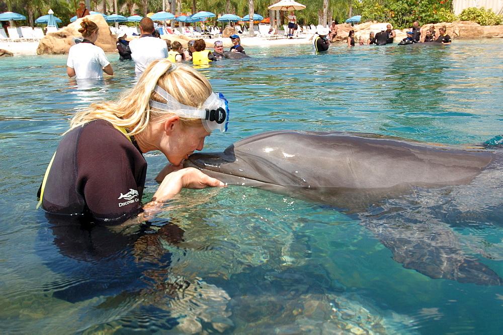Woman kissing a dolphin, Discovery Cove, adventure park, Orlando, Florida, USA, North America
