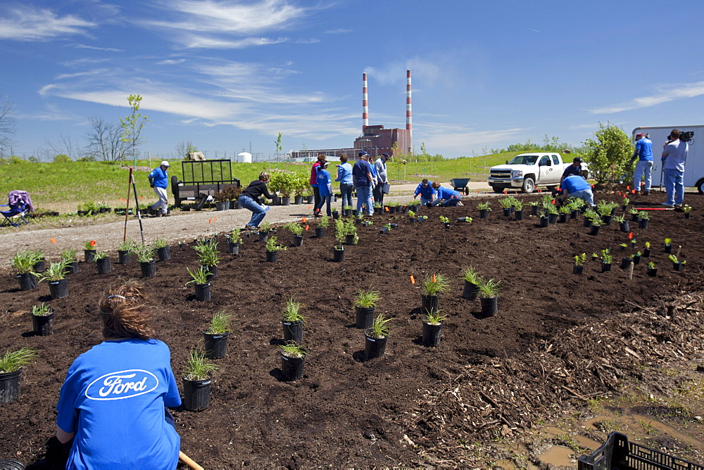 Volunteers from Ford Motor Co. plant an educational garden of native plants at the entry to Humbug Marsh, part of the Detroit River International Wildlife Refuge, at right Detroit Edison's Trenton Channel Power Plant, Trenton, Michigan, USA