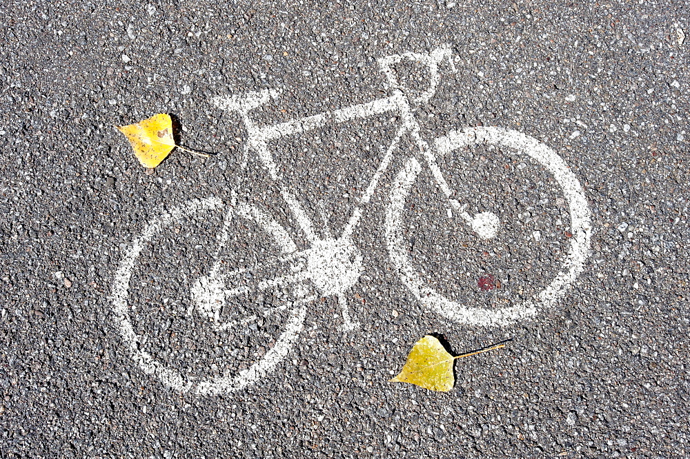 Bicycle pictogram on a bicycle track