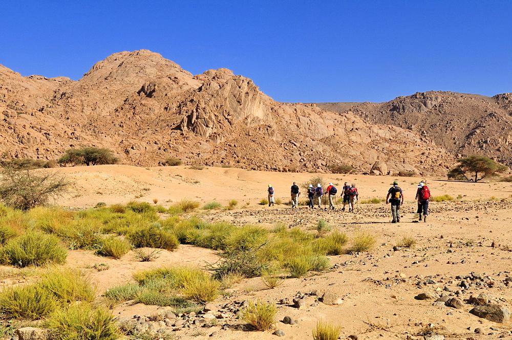 Group of tourists hiking through granite landscape, Hoggar, Ahaggar Mountains, Wilaya Tamanrasset, Algeria, Sahara, North Africa