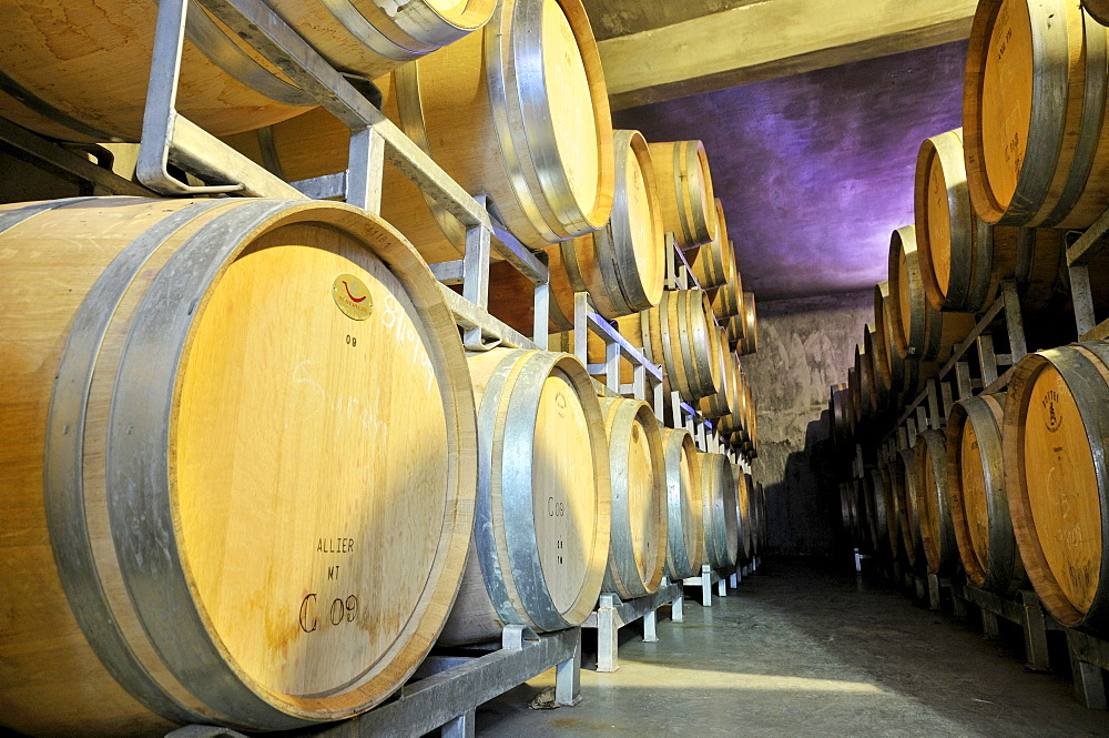 Stacked oak barrels for the production of barrique wines at a winery in Maipu, Mendoza Province, Argentina, South America - 832-109247
