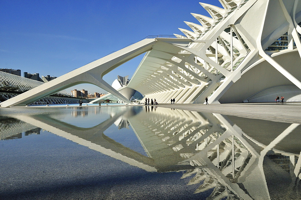 Museo de las Ciencias Principe Filipe in the Ciudad de las Artes y las Ciencias, City of Arts and Sciences, designed by Spanish architect Santiago Calatrava, Valencia, Comunidad Valenciana, Spain, Europe
