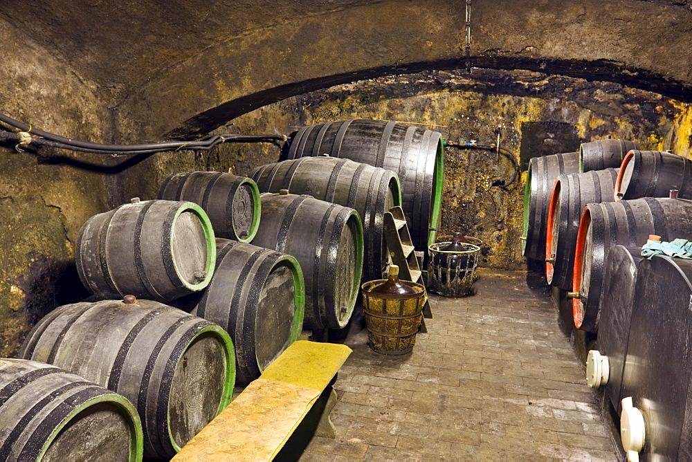 Wine cellar, Rakvice, Breclav district, South Moravia region, Czech Republic, Europe