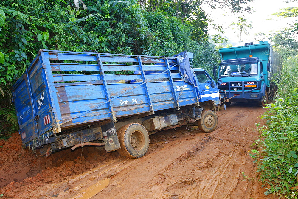 Truck being towed out of the mud by another truck, jungle trail, Bamenda, Cameroon, Africa