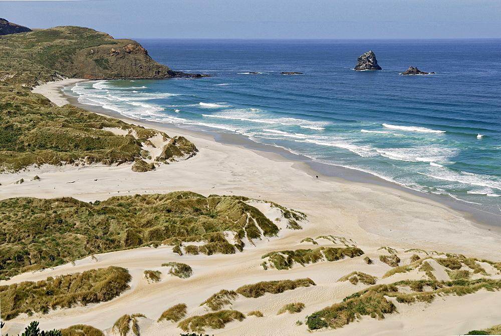 Sandfly Bay Wildlife Refuge, Otago Peninsula, Dunedin, South Island, New Zealand