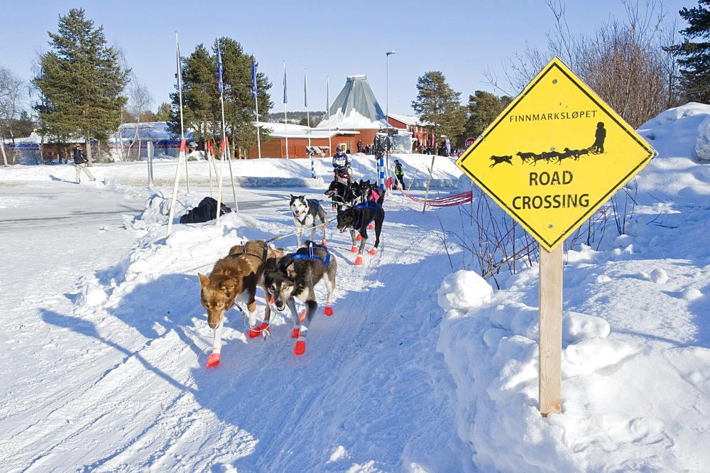 Sign along the trail in Karasjok, Finnmarkslopet, northernmost sled dog race in the world, Karasjok, Finnmark, Lapland, Norway, Europe