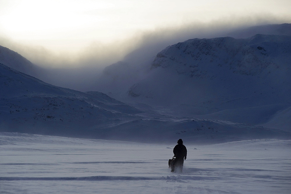 Sled dog team in front of the mountains of Finnmark, Lapland, Norway, Europe