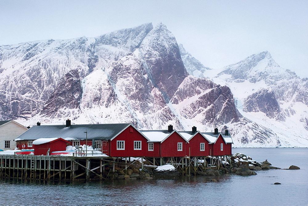 Traditional wooden houses, Rorbuer, in Reine, Moskenes, Moskenesoya, Lofoten, Norway, Europe