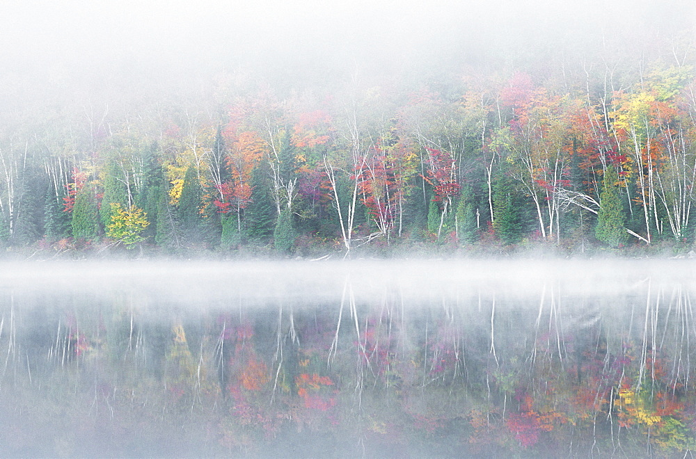 Early morning mist and autumn coloured trees on an island in Lac Bouchard Lake, La Mauricie National Park, Québec, Eastern Canada - 832-11122