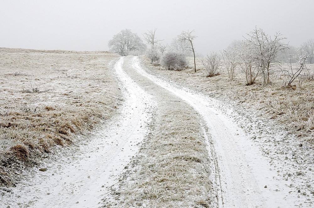 Farm track in winter, Harz mountain range, Saxony-Anhalt, Germany, Europe