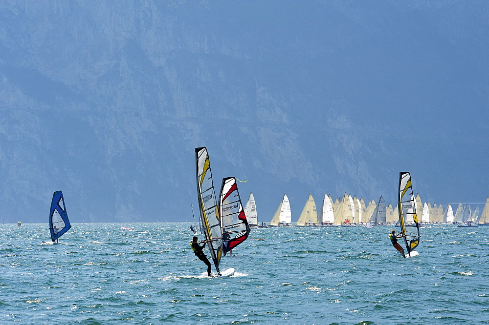 Wind surfers on Lake Garda near Torbole, province of Trento, Trentino, Italy, Europe