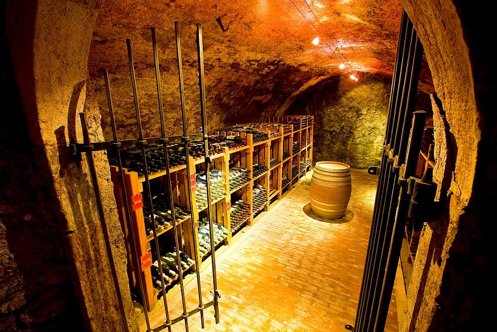 Wine cellar, Kurtatsch, Alto Adige, Italy, Europe