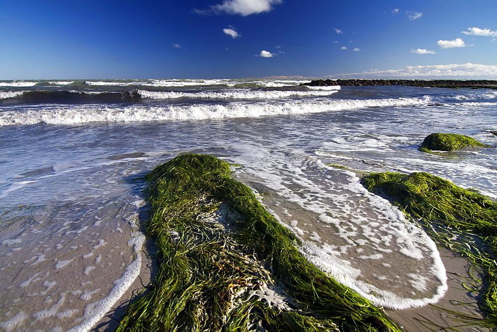 Beach at Ulvshale, Moen island, Denmark, Europe