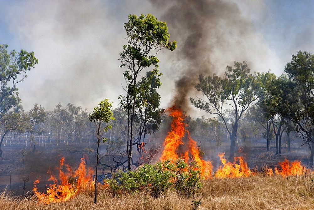 Bushfires, Northern Territory, Australia