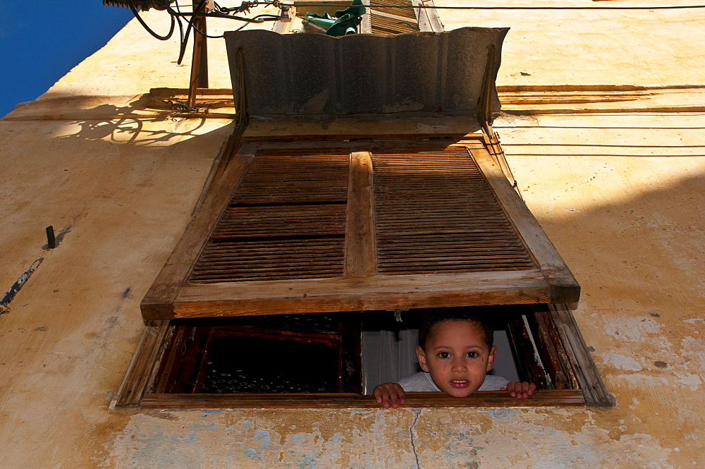 Boy looking out of a window underneath a window shutter, in the Kasbah, Unesco World Heritage site, historic district of Algiers, Algeria, Africa