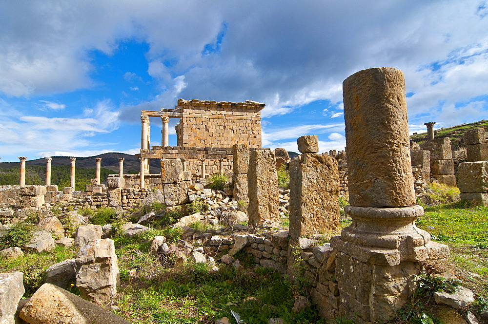 Temple of Septimius Severus, the Roman ruins of Djemila, Unesco World Heritage Site, Kabylie, Algeria, Africa