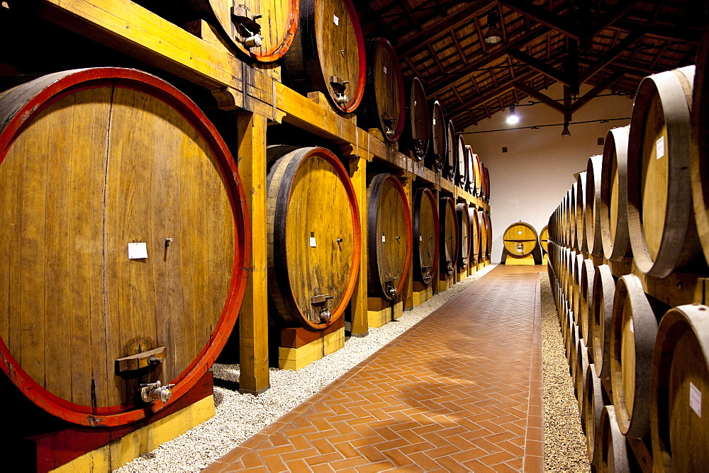 Wine cellar, Cantina Pellegrino, Marsala, Sicily, Italy, Europe