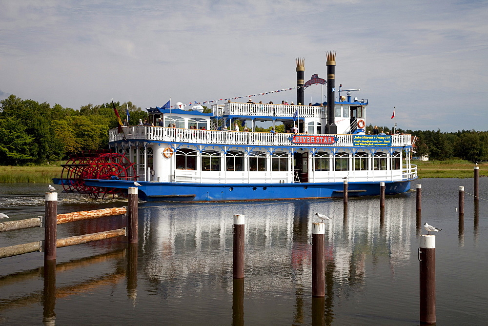 Bodden tour on the Prerower Strom estuary, Riverstar paddle steamer, Fischland-Darss-Zingst peninsula, Mecklenburg-Western Pomerania, Germany, Europe