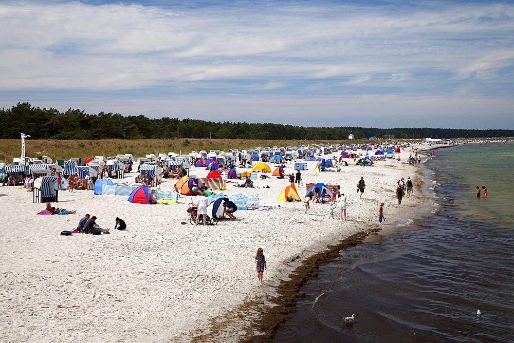 Beach, Prerow Baltic resort, Fischland-Darss-Zingst peninsula, Mecklenburg-Western Pomerania, Germany, Europe