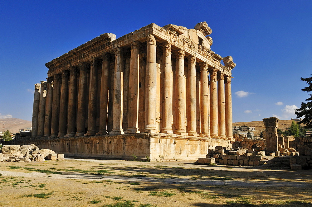Ancient Bacchus temple ruins at the archeological site of Baalbek, Unesco World Heritage Site, Bekaa Valley, Lebanon, Middle East, West Asia