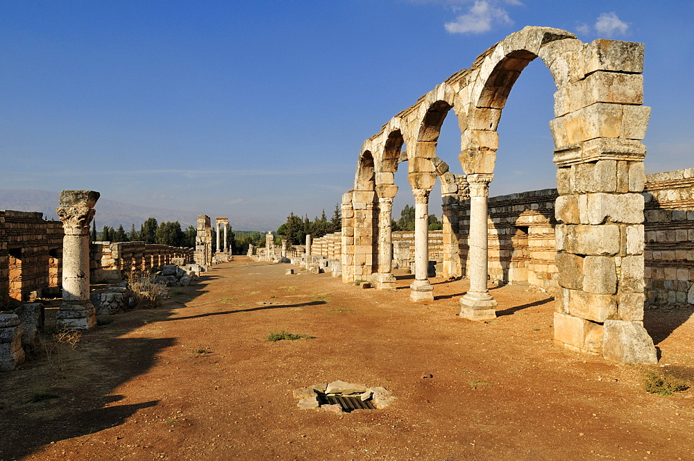 Ancient Umayyad ruins at the archeological site of Anjar, Unesco World Heritage Site, Bekaa Valley, Lebanon, Middle East, West Asia