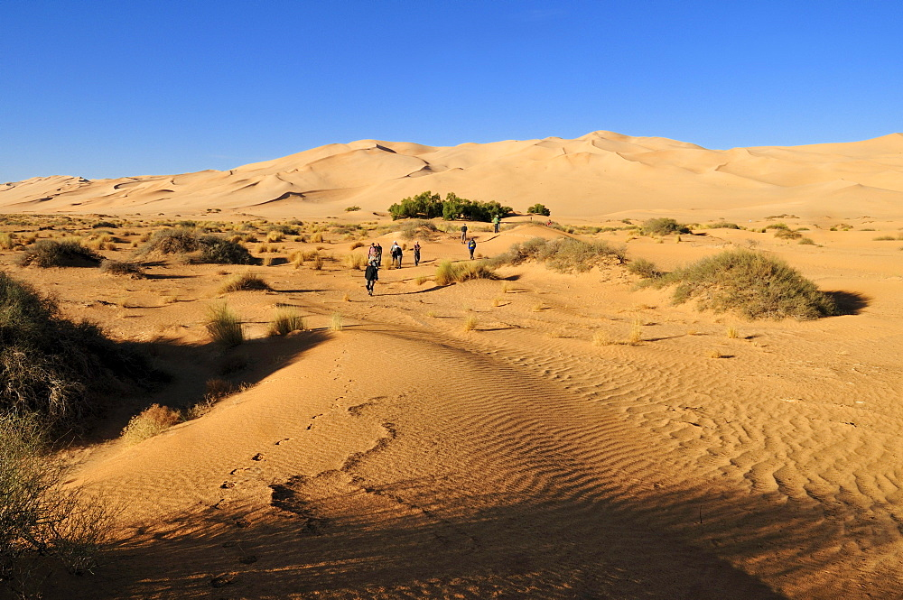 Group of tourist hiking in the sand dunes of Erg Admer, Wilaya Illizi, Algeria, Sahara, North Africa