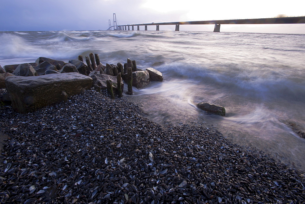 Baltic Sea beach and surf at Store Belt, Great Belt Bridge, Nyborg, Korsor, South Denmark, Denmark, Europe
