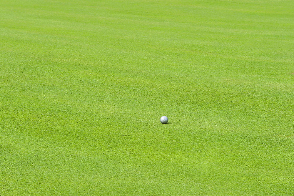 Silver golf ball on the green